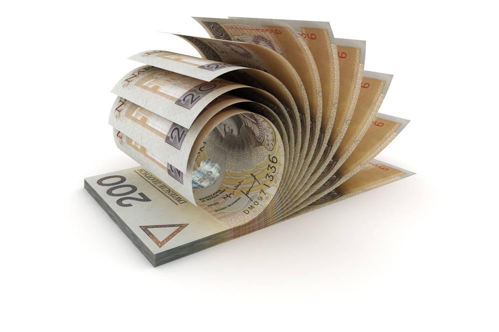 Czym różnią się kredyty od pożyczek?